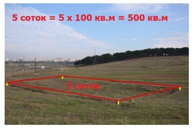 50 квадратных метров это сколько метров по периметру