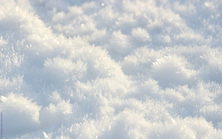 95277096_Nature_Seasons_Winter_Only_winter_snow_006435_