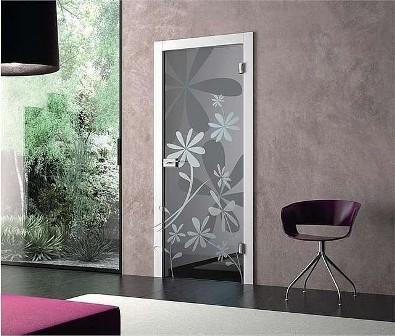 двери из стекла триплекс