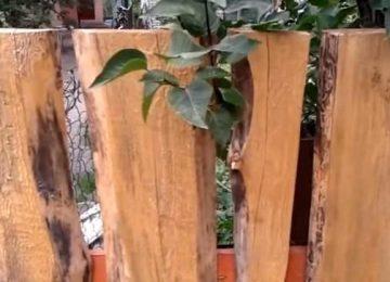 деревянный забор с необрезной доски