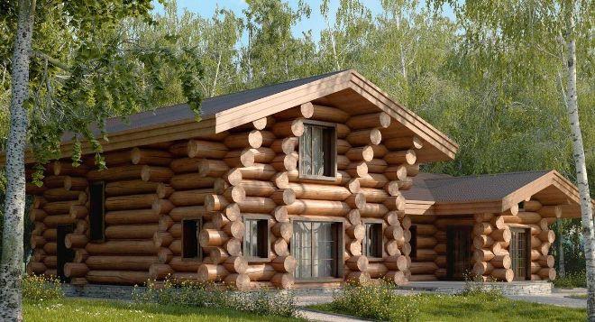 Традиции и современность. Выбор древесины для строительства