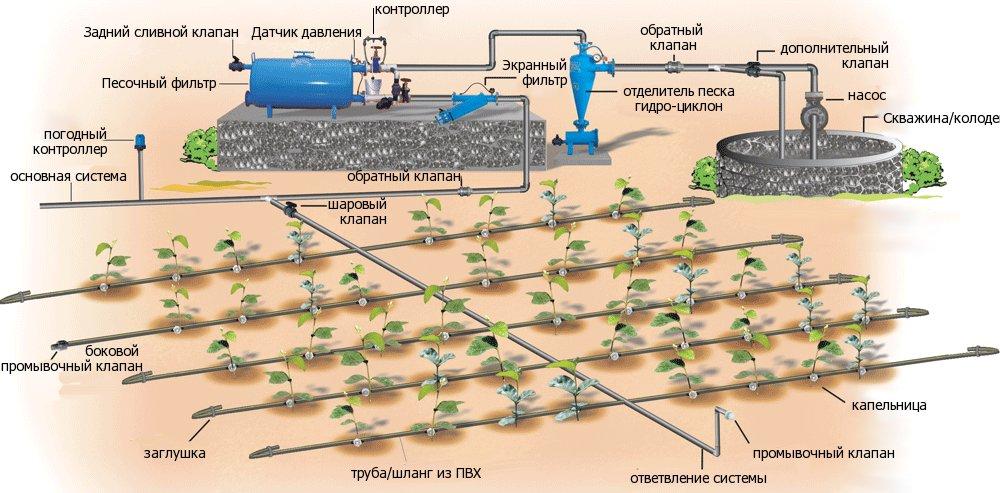 Капельная система автоматического полива