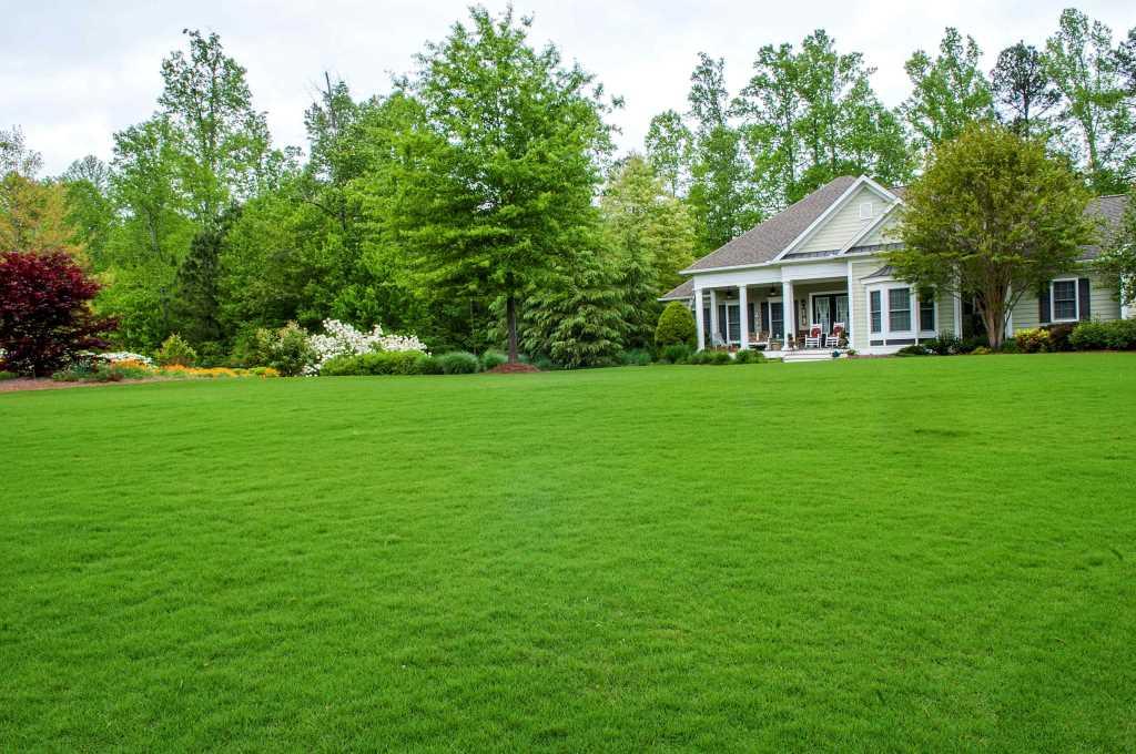 Уложенный искусственный газон