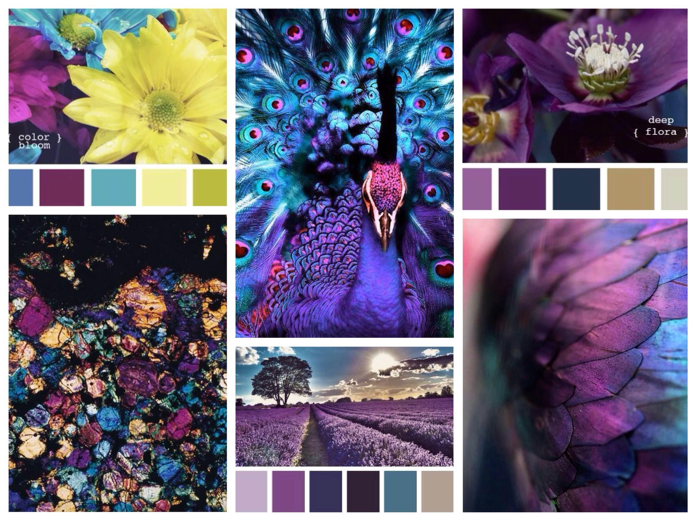 оттенки фиолетового цвета палитра