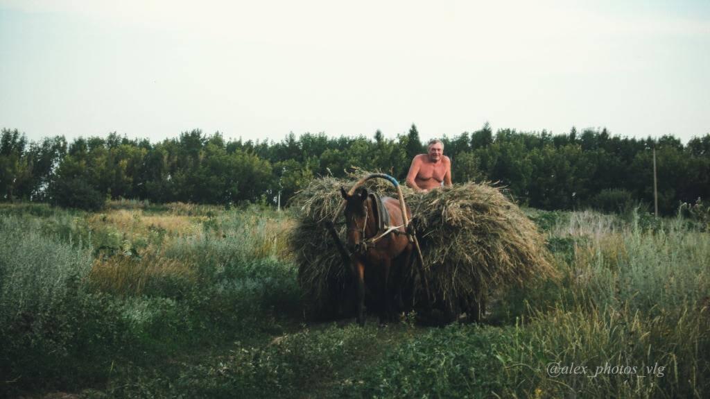 плюсы и минусы сельской жизни