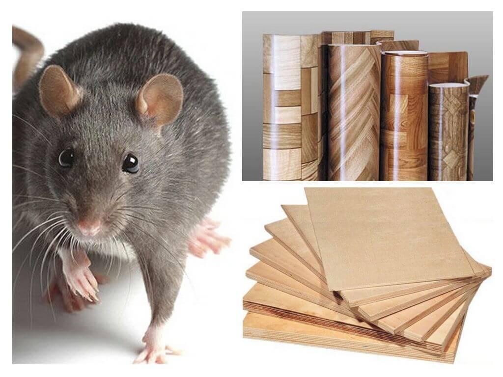 какой утеплитель не любят мыши