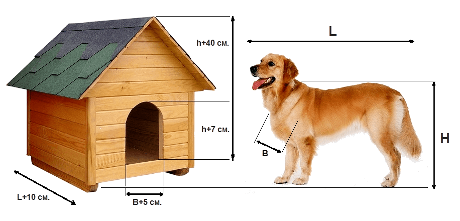 будка для овчарки размеры