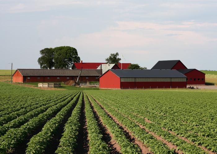 Крестьянское фермерское хозяйство - закон, открытие и регистрация, земля и имущество | россельхоз.рф