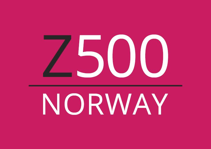проект 500