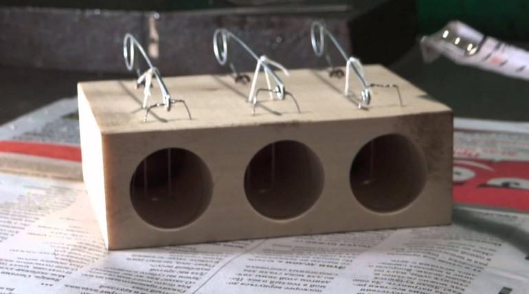 Мышеловка своими руками- гуманные ловушки с фото и видео