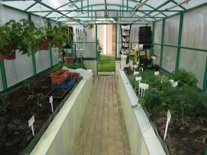 Как устроить грядки в огороде?   cельхозпортал