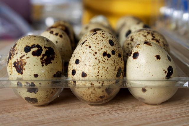 Перепелиные яйца: польза и вред, как принимать