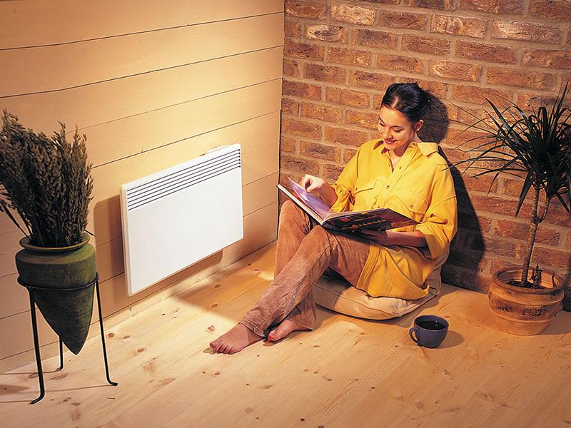 Как выбрать конвектор – 110 фото и советы по выбору элемента системы отопления