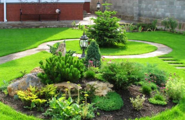 Как сделать газон на даче своими руками: тонкости | моя дача как сделать газон на даче своими руками: красота не требует жертв | моя дача