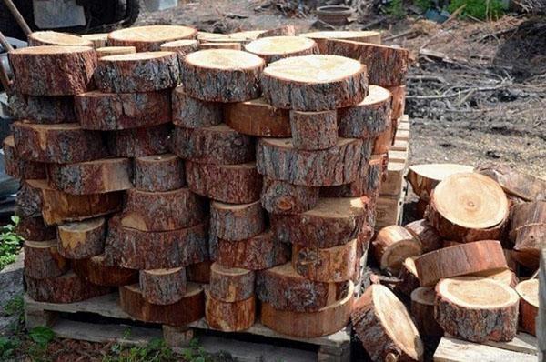 Поделки из дерева своими руками - 72 фото идей необычных изделий из дерева