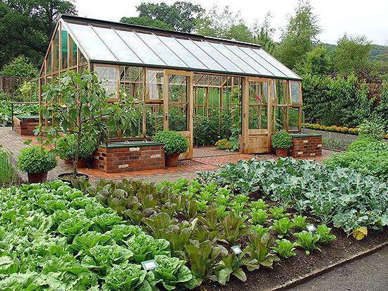 Принципы и схема планировки сада