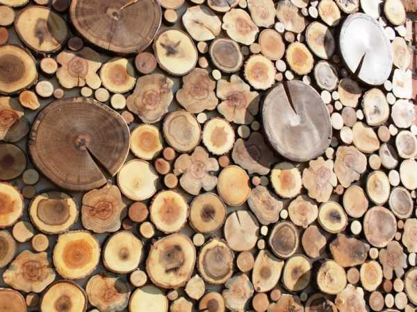 стена из деревянных спилов