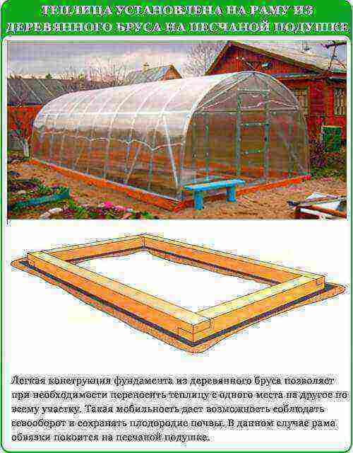 Установка теплицы на приусадебном участке и правильная ориентация по сторонам света русский фермер