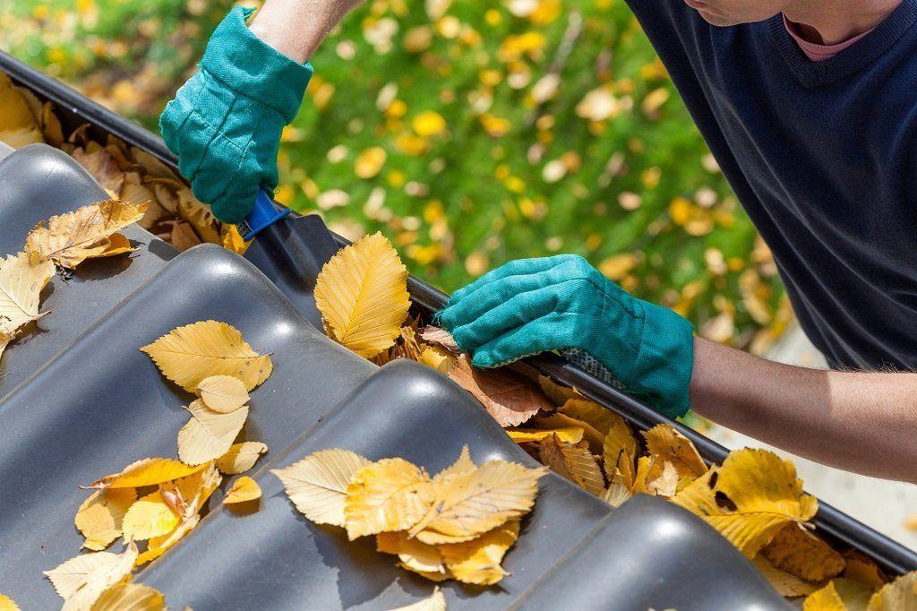 Что делать с осенней листвой в саду? приготовление компоста из осенних листьев. фото — ботаничка.ru