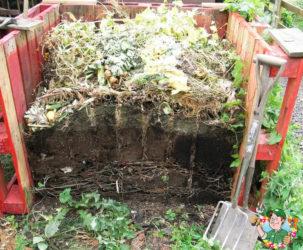 Ускоритель компостирования: чем полить компостную кучу для перегнивания, эм препараты, бактерии