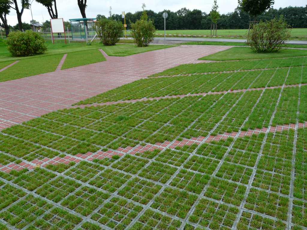 Газонные решетки на даче: материалы, форма и этапы монтажа, примеры на фото