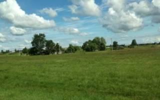 Земли для ведения огородничества: плюсы и минусы, варианты использования