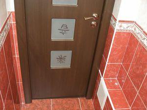 Раздвижные двери в ванную комнату (37 фото): как выбрать двери-купе для ванной комнаты и туалета, стеклянные конструкции для санузла, межкомнатные шпонированные изделия