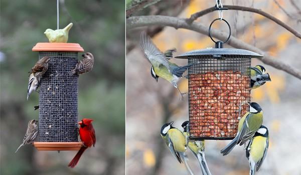 кормушки для птичек