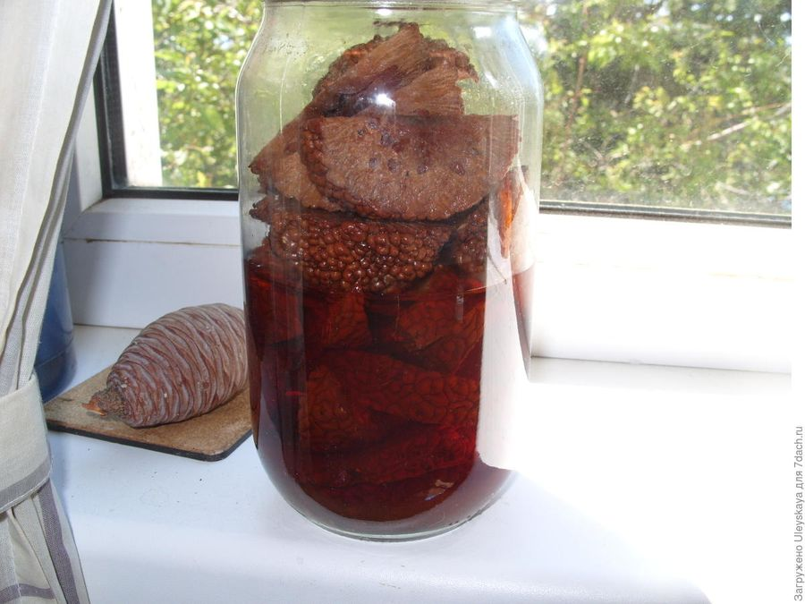 Адамово яблоко: рецепт настойки для суставов, рецепт на водке и спирту
