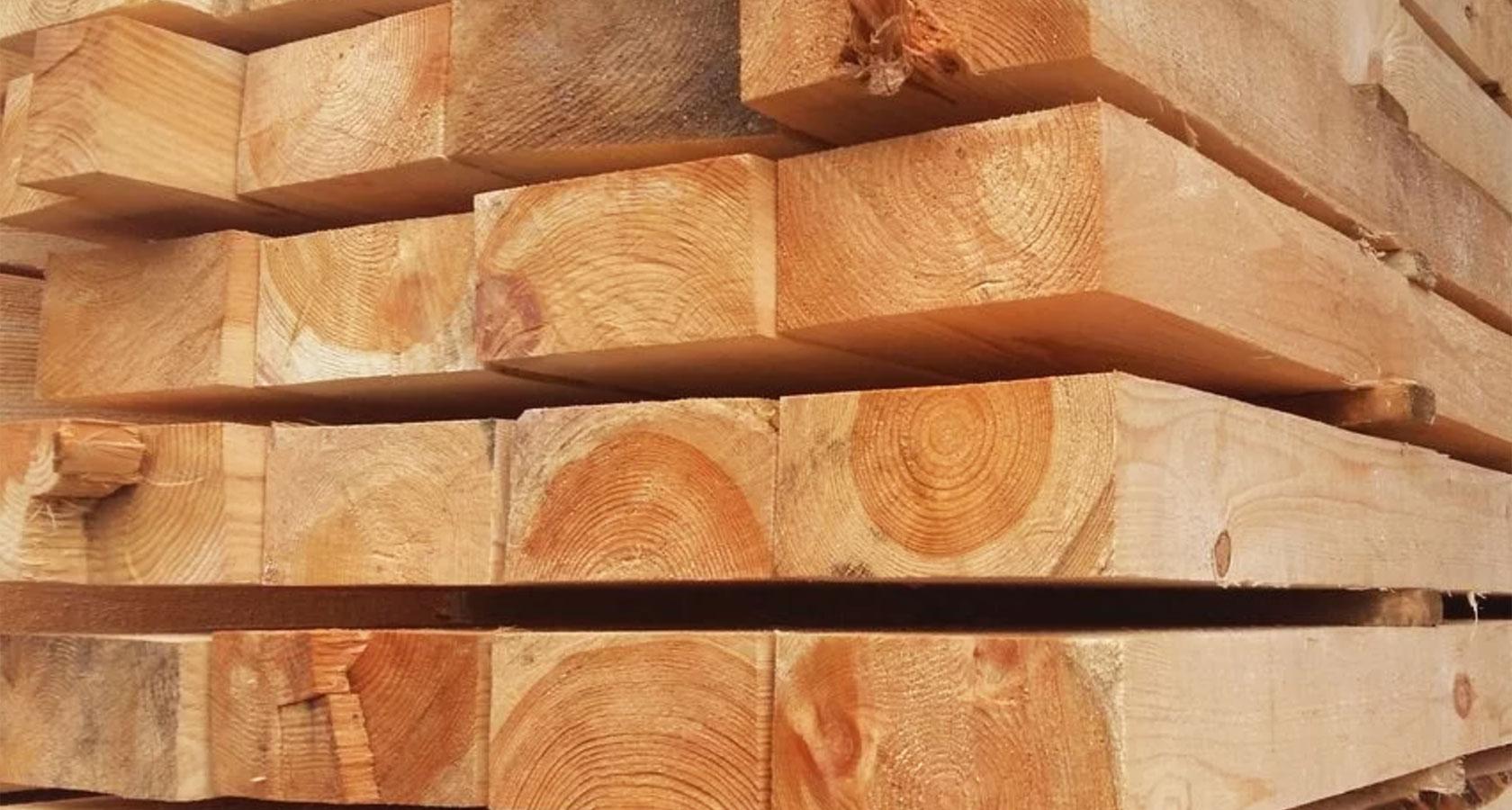 Железное дерево: виды, плотность, применение