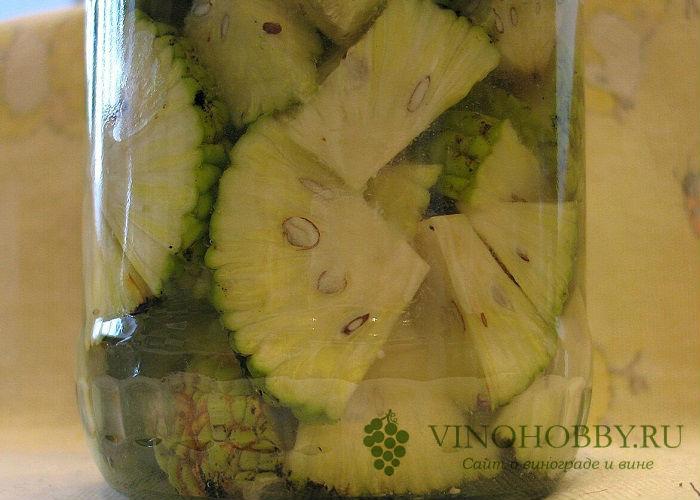 Маклюра (адамово яблоко) – настойка, применение