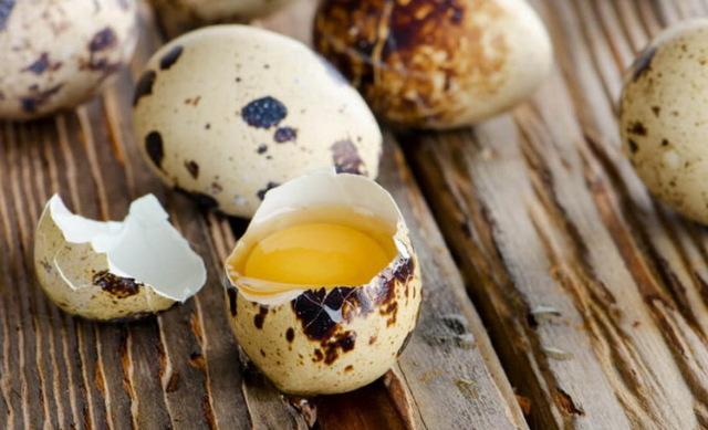 Польза перепелиных яиц в сыром и вареном виде