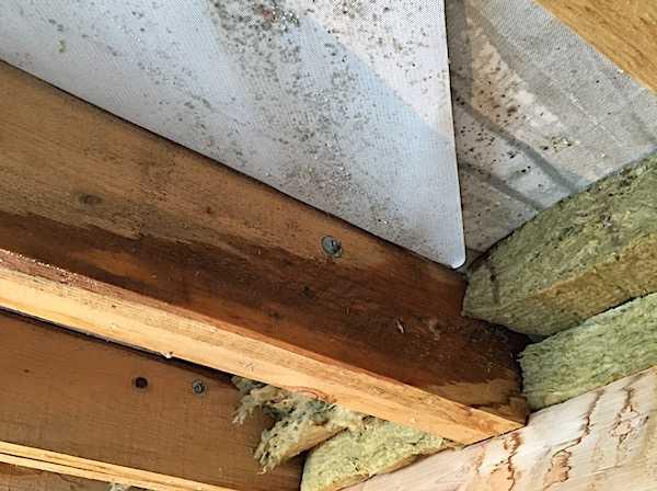 Ветрозащита для стен деревянного дома - о нюансах в строительных работах