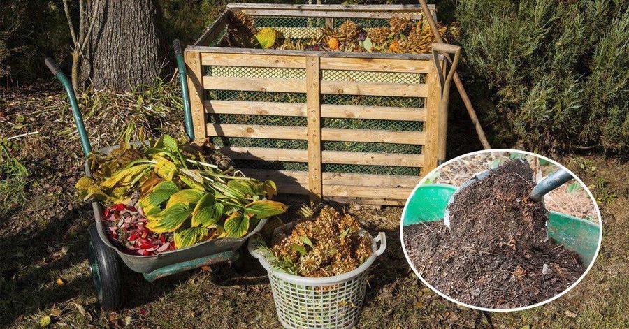 Как правильно сделать компост: 5 вариантов изготовления компоста на даче. радость для растений! | садовый участок