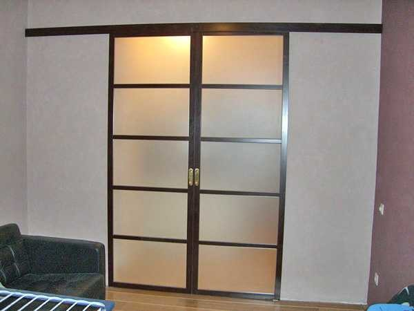 Раздвижные межкомнатные одностворчатые двери и фото