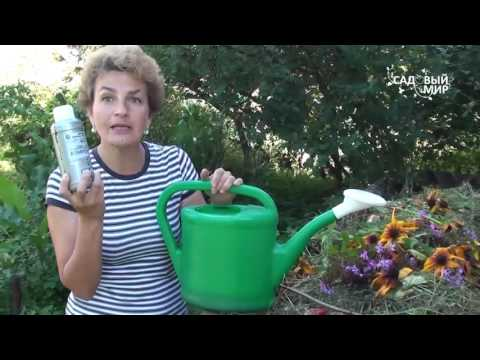 Байкал для компоста современный эм-препарат для быстрого получения удобрения