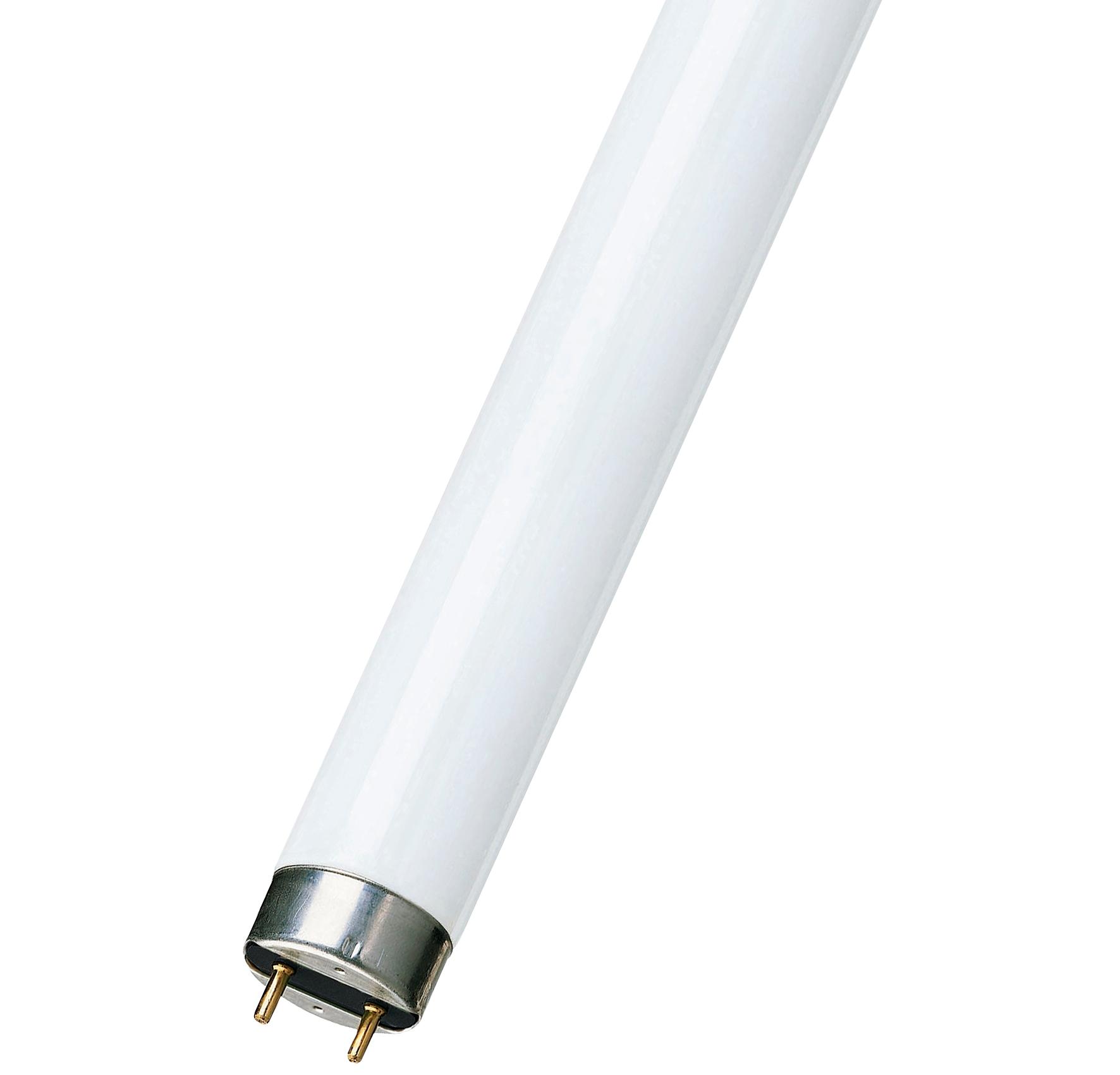 Лампа дневного света: маркировка, размеры, состав, напряжение и преимущества