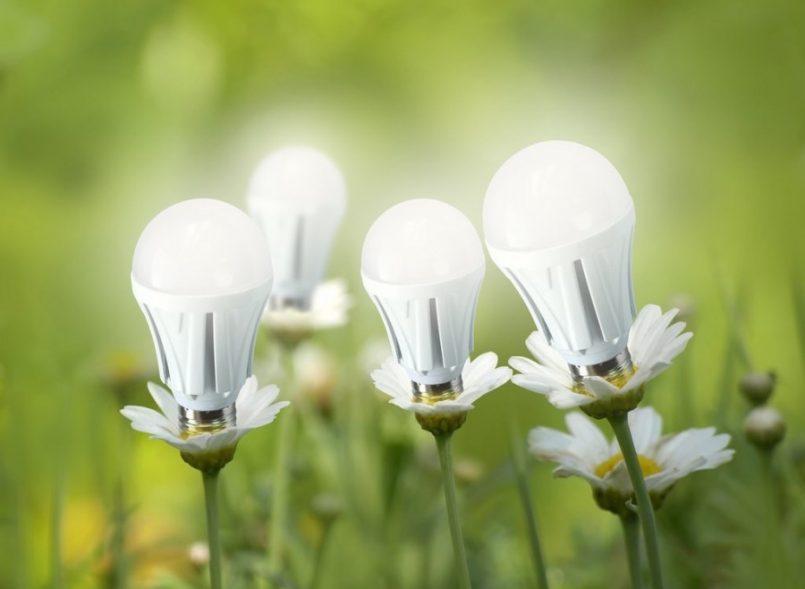 светодиодные лампы для дома виды