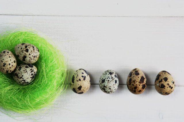 Перепелиные яйца: польза и вред, как принимать, особенности для мужчин и женщин, рецепты для детей, применение в косметологии и лечении + видео medistok.ru - жизнь без болезней и лекарств