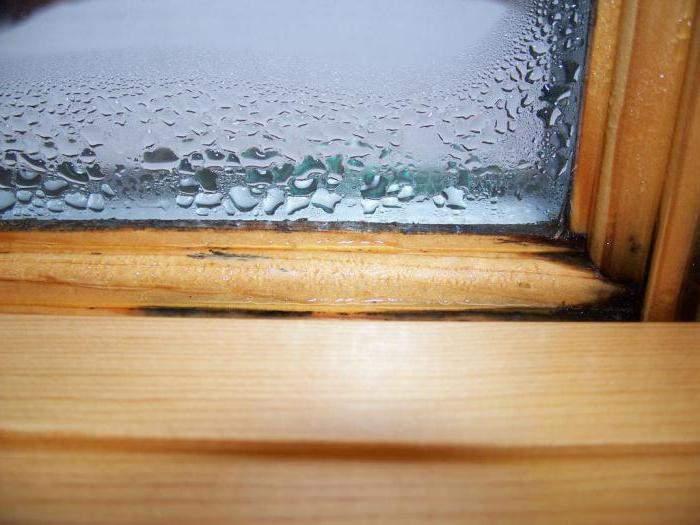 Почему «потеют» деревянные окна и что с этим делать?