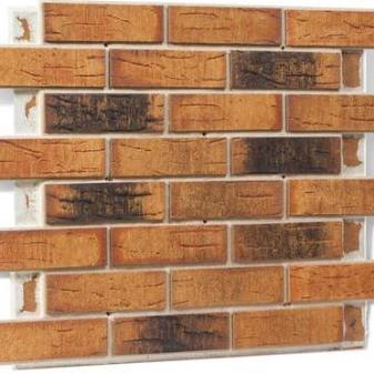Клинкерный кирпич для фасада: достоинства и недостатки, размеры, технология облицовочных работ + фото домов