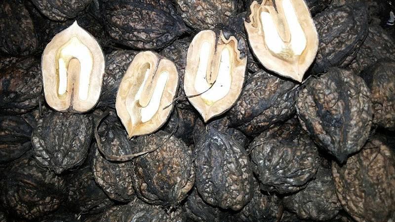 Свойства и характеристики маньчжурского ореха, его вред и польза для здоровья