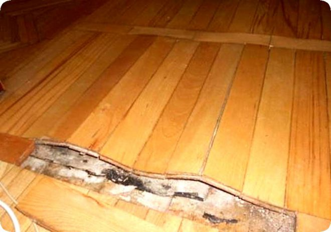 Как устранить скрип деревянного пола: почему полы скрипят и как избавиться от «музыки»