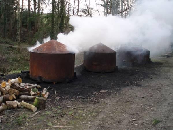 Уголь для отопления дома: виды, преимущества и особенности