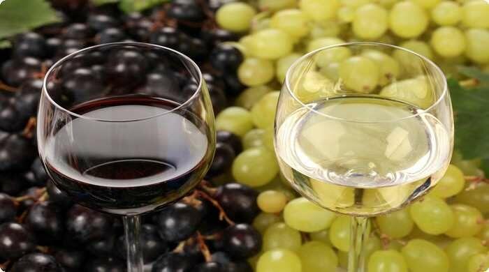 Виноградное сусло: что это, технология приготовления