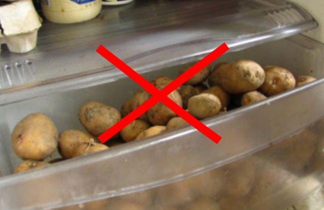 Все нюансы и секреты хранения картофеля от опытного фермера