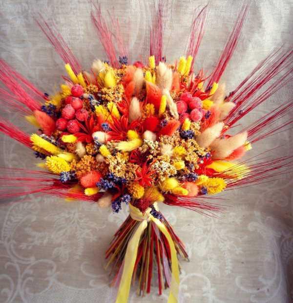 Многолетние сухоцветы: фото, названия и описания цветов