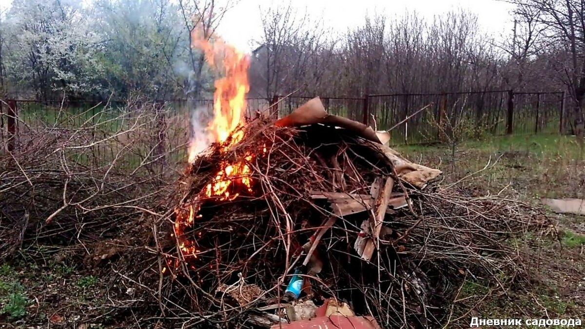 Как правильно сжигать мусор на участке – разбираемся с законами – дачные дела