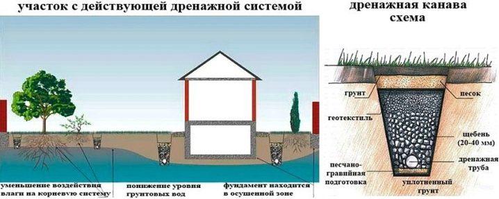Методы поиска воды на участке для скважины