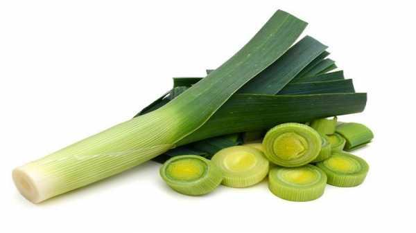 Лук-порей - полезные свойства для здоровья и вред, рецепты приготовления блюд с фото